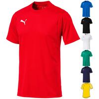 Puma LIGA Training Jersey Junior 655631