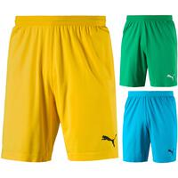 Puma FINAL evoKNIT Torwart Shorts 703455