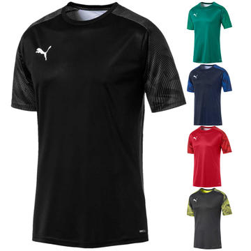 Puma CUP Training T-Shirt Jersey 656023