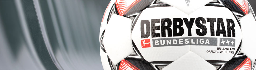 Derbystar Bundesliga Spielball 2018/2019